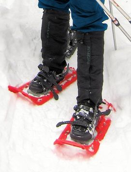 New Mexico snowshoe equipment